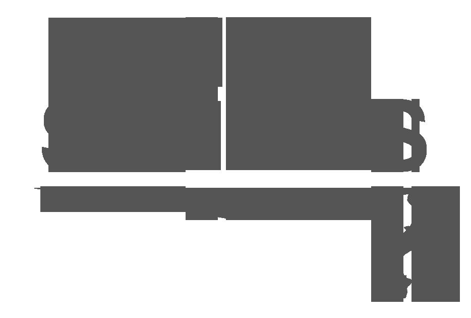 Wild Summits Logo