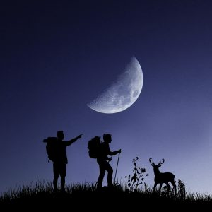 Night Hike Glendalough