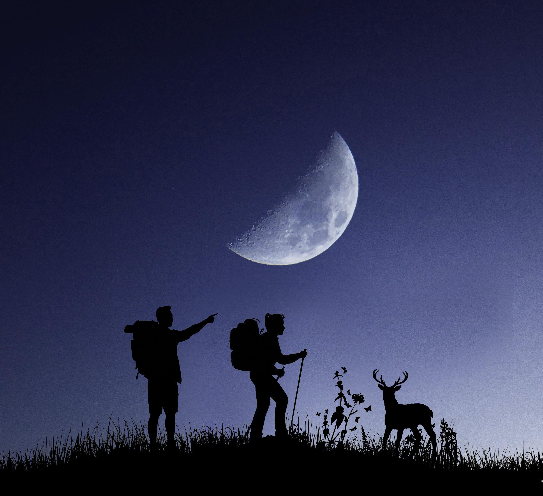 Night Hike Wicklow